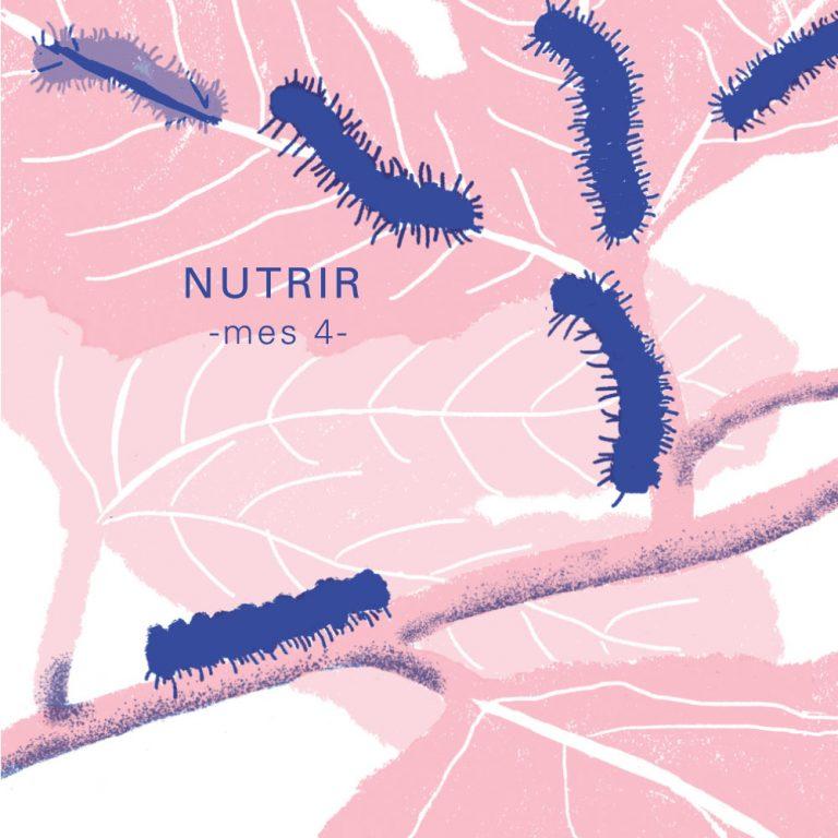 NUTRIR: MES 4