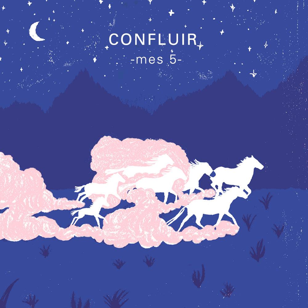 CONFLUIR: MES 5